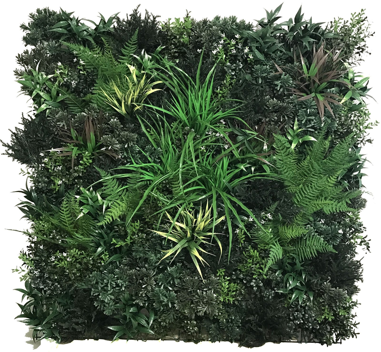 Botanical Green Wall by Bonham & Bonham
